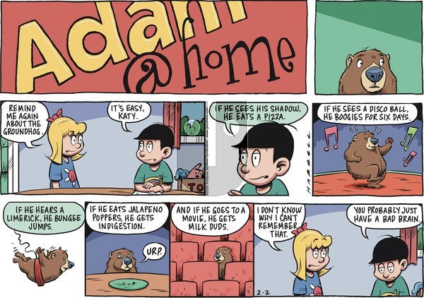 Adam@Home on Sunday February 2, 2020 Comic Strip