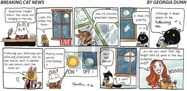 Breaking Cat News on Sunday July 16, 2017 Comic Strip