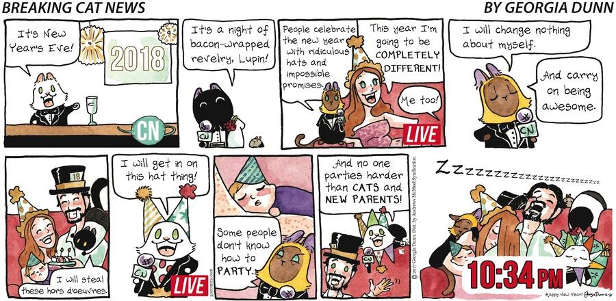 Breaking Cat News for Dec 31, 2017 Comic Strip