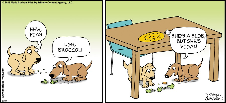 Half Full Comic Strip for May 19, 2019