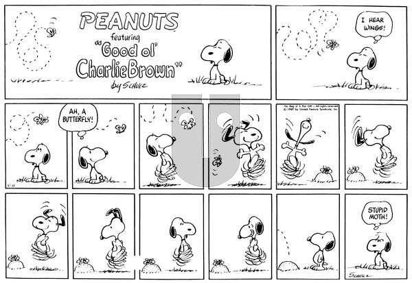 Peanuts on Sunday May 11, 1969 Comic Strip