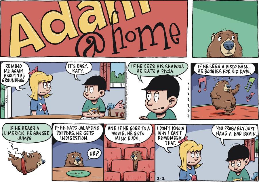 Adam@Home Comic Strip for February 02, 2020