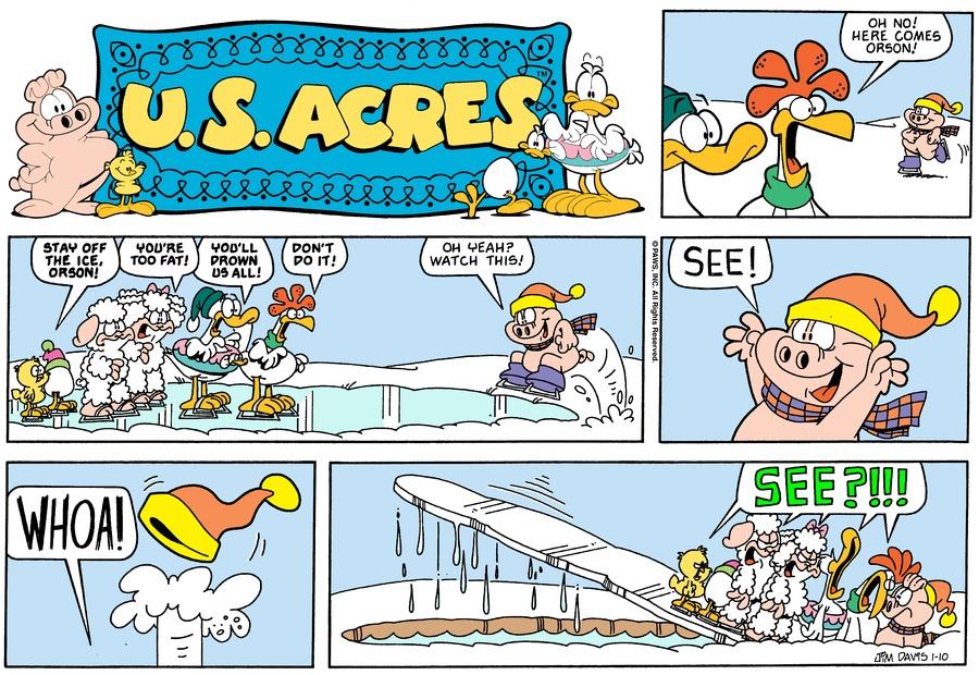 U.S. Acres for Jan 6, 2013 Comic Strip