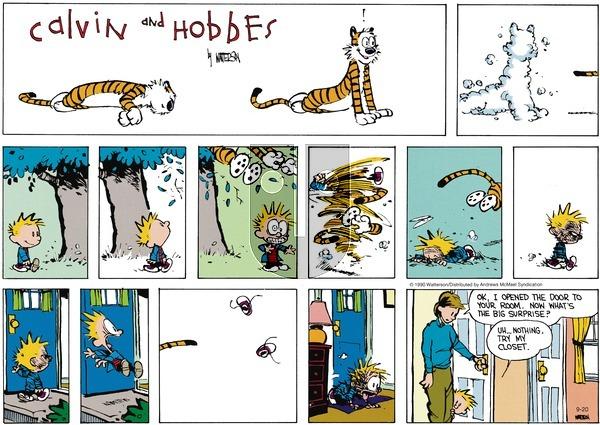 Calvin and Hobbes - Sunday September 20, 2020 Comic Strip