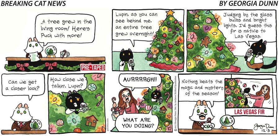 Breaking Cat News for Dec 3, 2017 Comic Strip