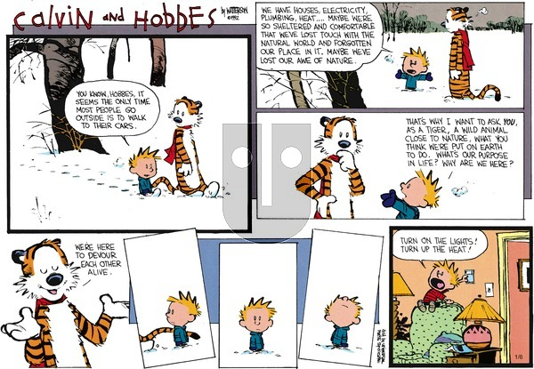Calvin and Hobbes - Sunday February 23, 1992 Comic Strip