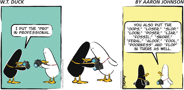W.T. Duck Comic Strip for November 18, 2018