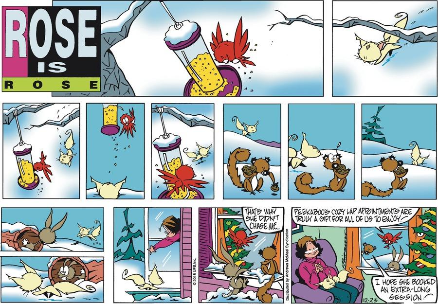Rose is Rose Comic Strip for December 23, 2018