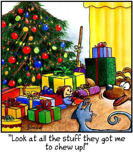 Birdbrains Comic Strip for December 23, 2016