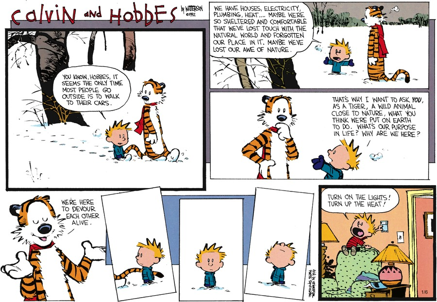 Calvin and Hobbes Comic Strip for February 23, 1992