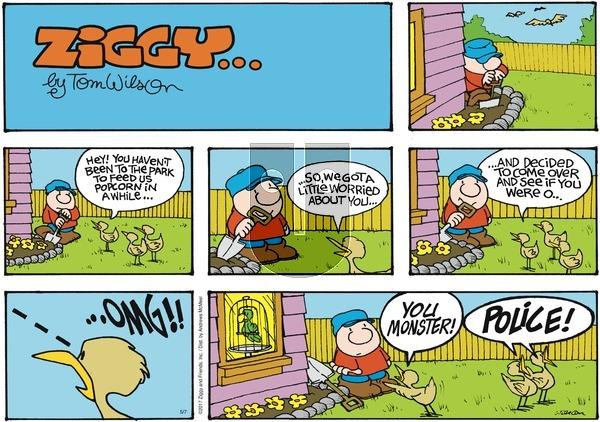 Ziggy on Sunday May 7, 2017 Comic Strip
