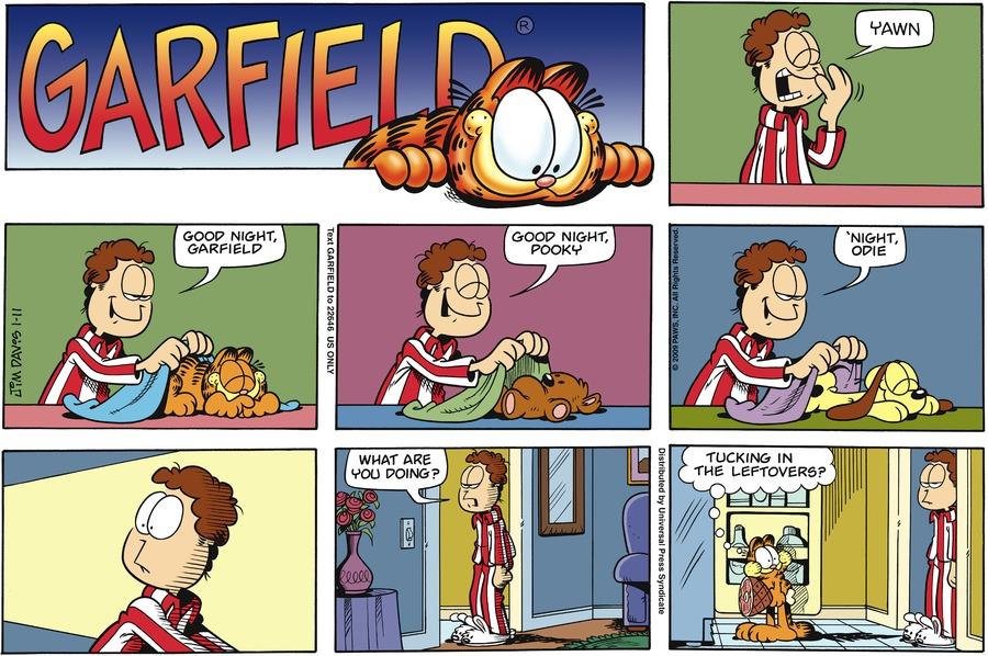 Garfield Comic Strip for January 11, 2009