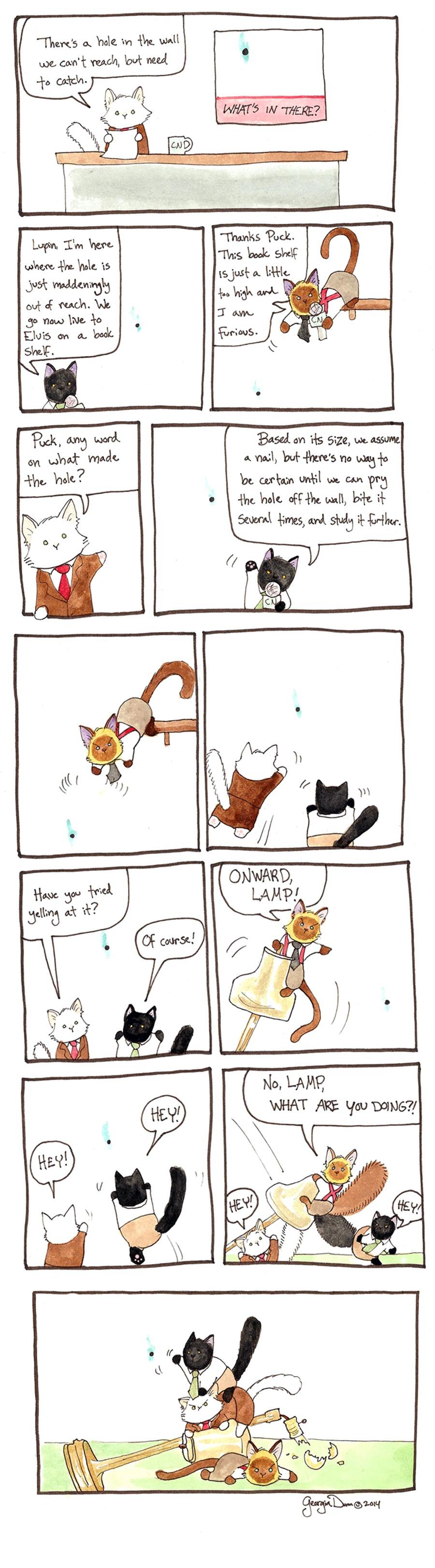 Breaking Cat News Comic Strip for September 25, 2016