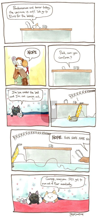 Breaking Cat News on Sunday September 4, 2016 Comic Strip