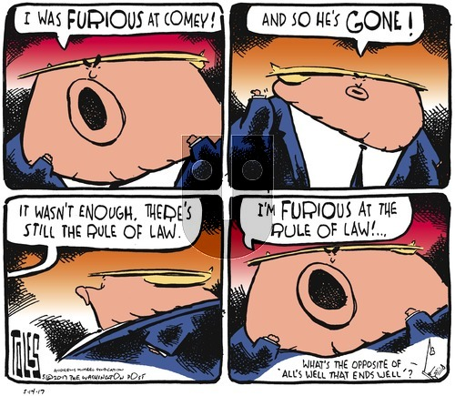 Tom Toles on Sunday May 14, 2017 Comic Strip