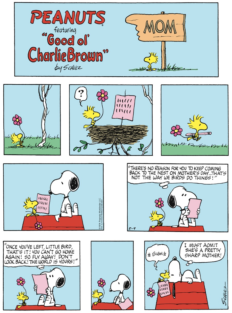 Peanuts Comic Strip for May 09, 2021