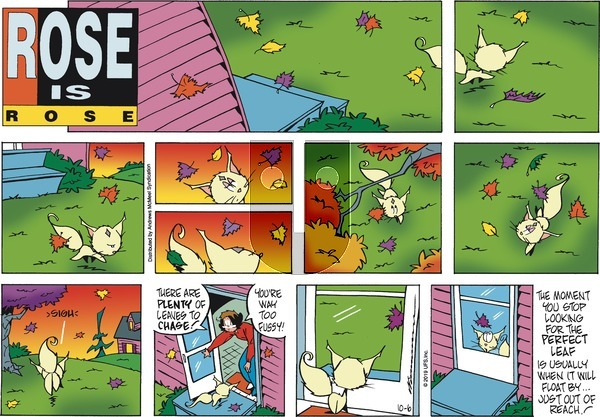 Rose is Rose on Sunday October 6, 2019 Comic Strip