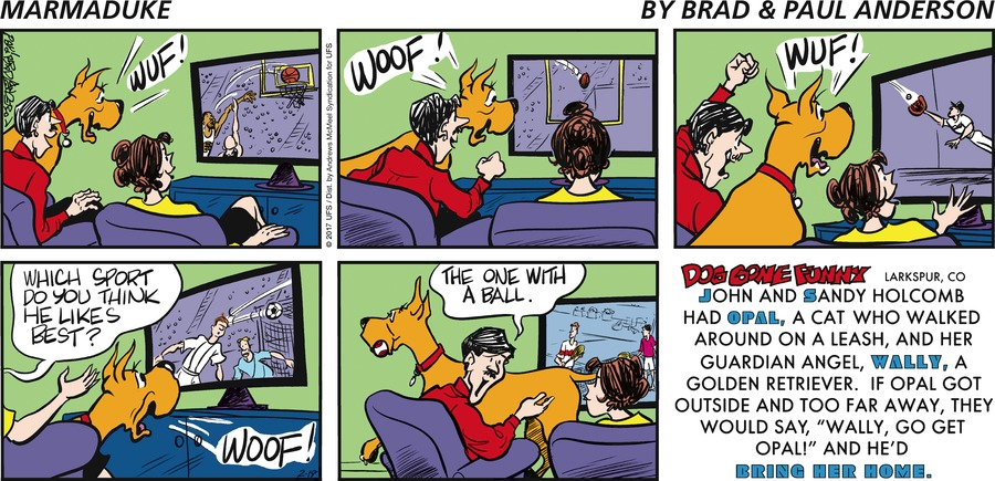 Marmaduke for Feb 19, 2017 Comic Strip