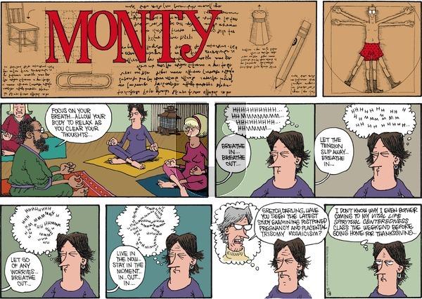 Monty on Sunday November 18, 2012 Comic Strip