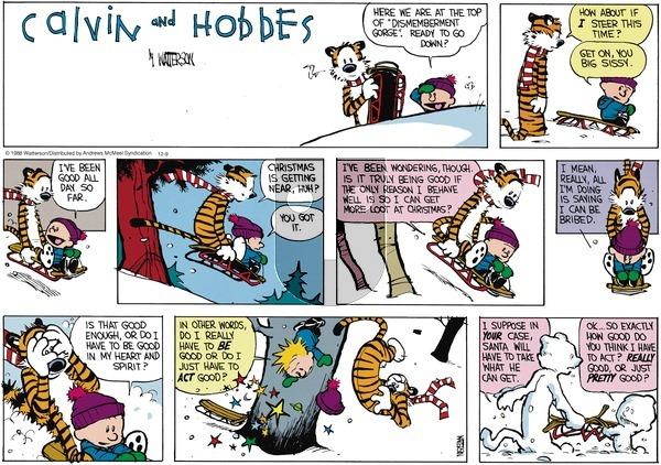 Calvin and Hobbes - Sunday December 9, 2018 Comic Strip