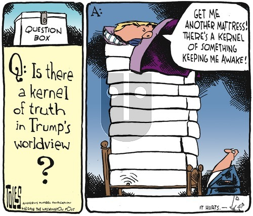 Tom Toles on Sunday June 17, 2018 Comic Strip