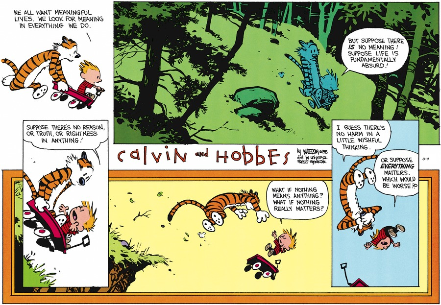 Calvin and Hobbes Comic Strip for August 02, 2015