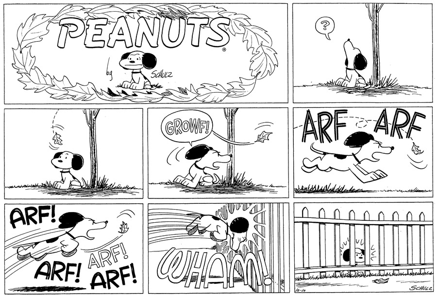 """""""?"""" Snoopy sits on the ground and stares up at a tree.<BR><BR> A leaf drifts down towards Snoopy's head.<BR><BR> """"GROWF!"""" Snoopy growls at the leaf as it floats past him.<BR><BR> """"ARF ARF"""" Snoopy chases the leaf, barking.<BR><BR> """"ARF! ARF! ARF! ARF!"""" Snoopy leaps into the air after the leaf.<BR><BR> WHAM! Snoopy bangs his head against a fence.<BR><BR> Snoopy sits on the ground, glaring at the leaf which lies on the ground on the other side of the fence.<BR><BR>"""