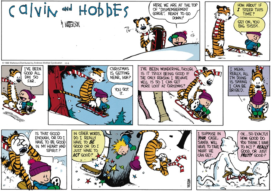 Calvin and Hobbes Comic Strip for December 09, 2018
