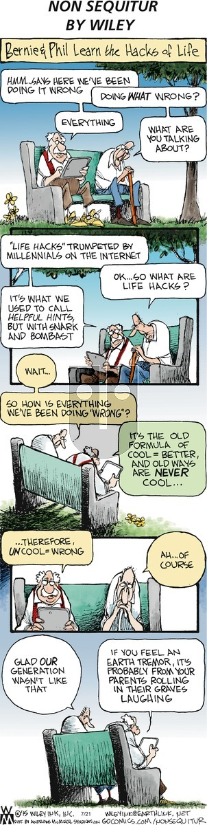 Non Sequitur - Sunday July 21, 2019 Comic Strip