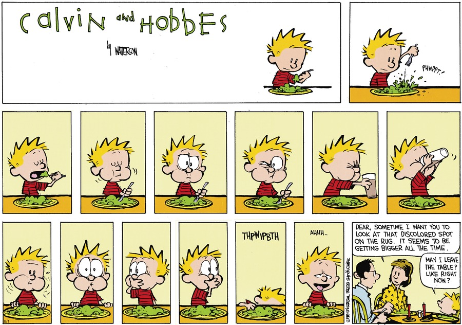 Calvin and Hobbes Comic Strip for September 17, 1989