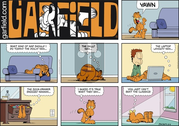Garfield on Sunday October 6, 2019 Comic Strip