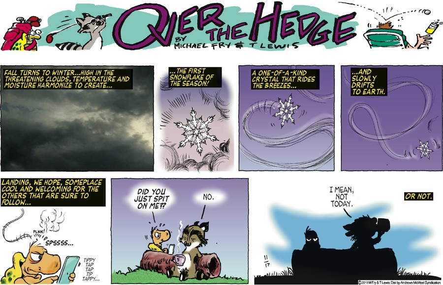 Over the Hedge Comic Strip for November 17, 2019