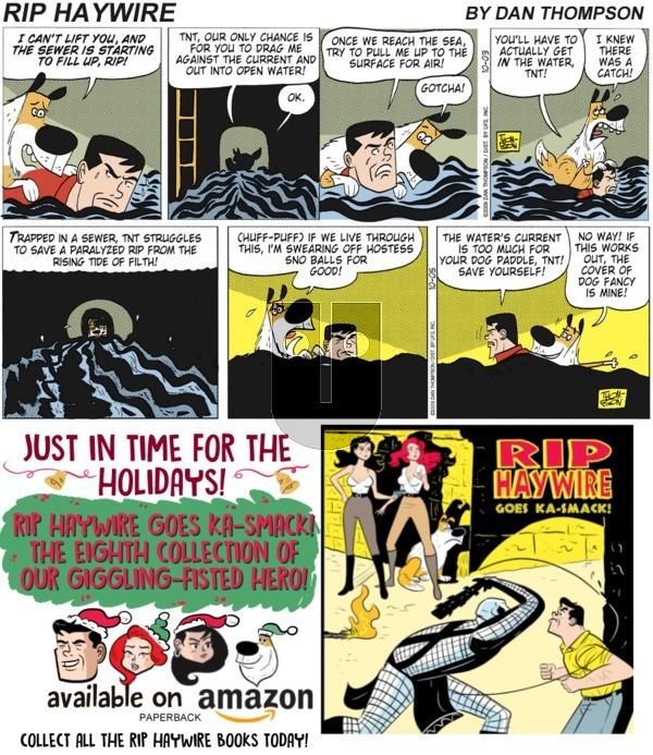 Rip Haywire on Sunday December 30, 2018 Comic Strip