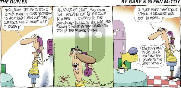 The Duplex on Sunday May 28, 2017 Comic Strip