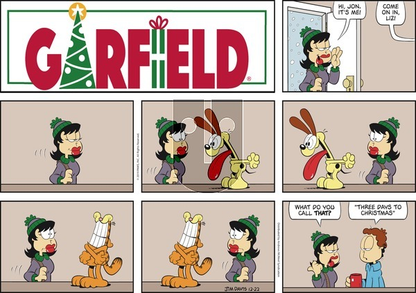 Garfield on Sunday December 22, 2019 Comic Strip