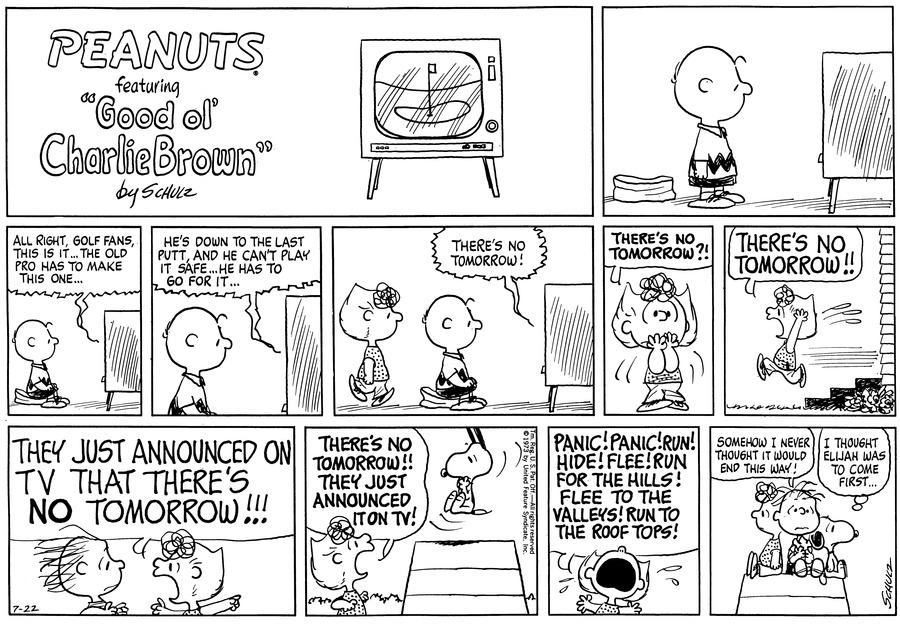 Peanuts Comic Strip for July 22, 1973