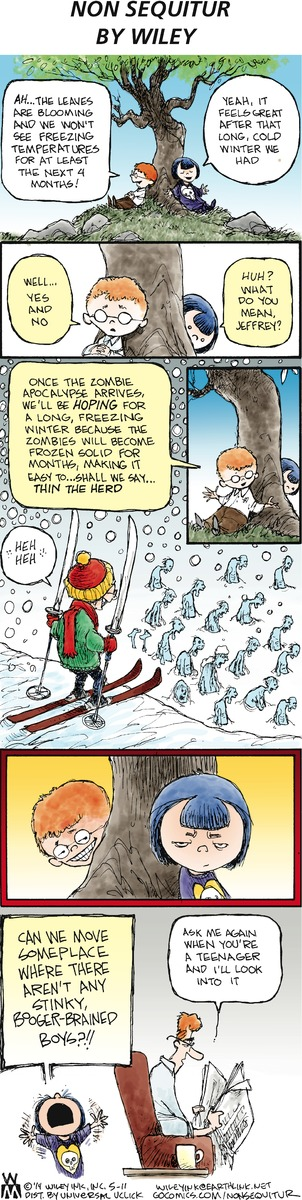 Non Sequitur comic strip