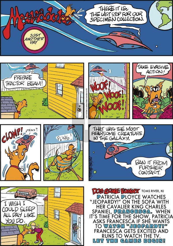 Marmaduke on Sunday February 17, 2019 Comic Strip
