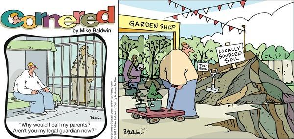 Cornered - Sunday June 13, 2021 Comic Strip