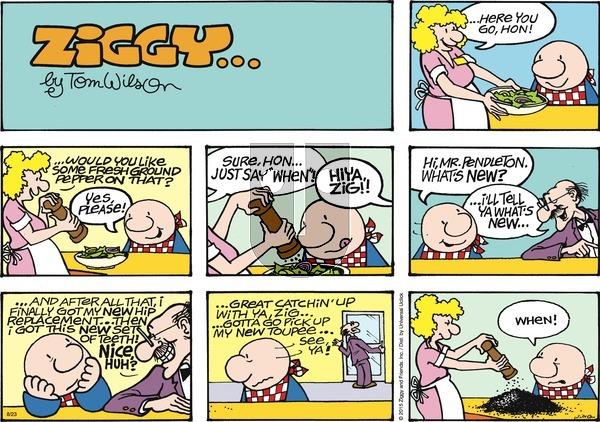 Ziggy on Sunday August 23, 2015 Comic Strip
