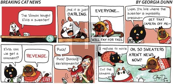 Breaking Cat News on Sunday February 10, 2019 Comic Strip