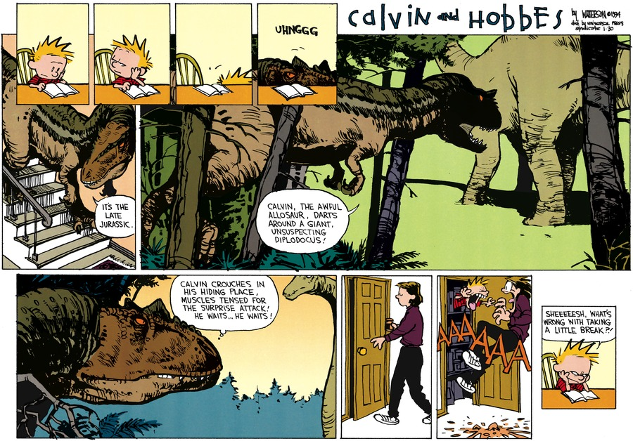 Calvin and Hobbes Comic Strip for January 30, 1994