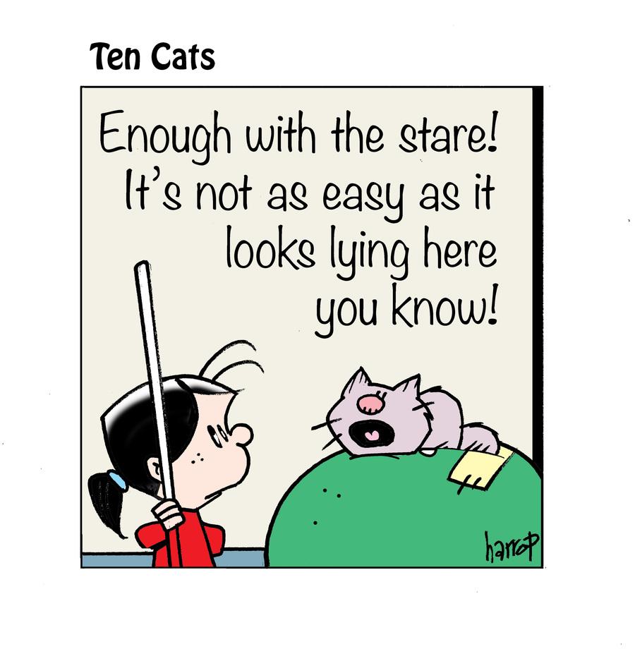 Ten Cats by Graham Harrop on Tue, 16 Feb 2021