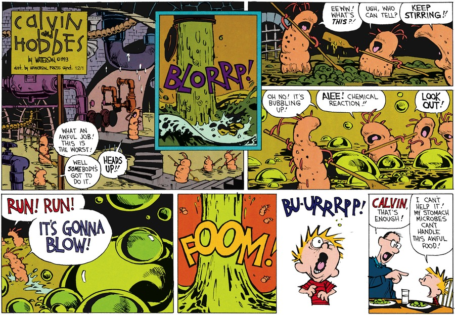 Calvin and Hobbes Comic Strip for February 07, 1993