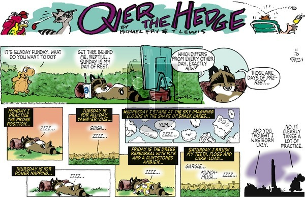 Over the Hedge on Sunday November 10, 2019 Comic Strip