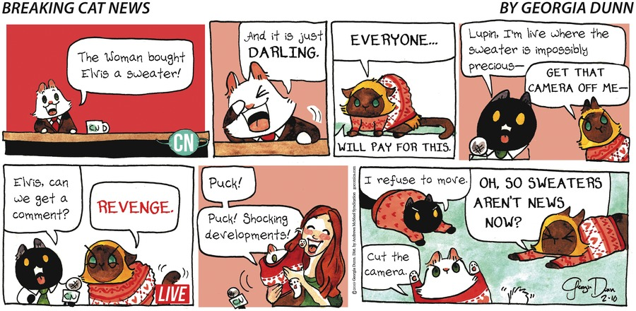Breaking Cat News Comic Strip for February 10, 2019