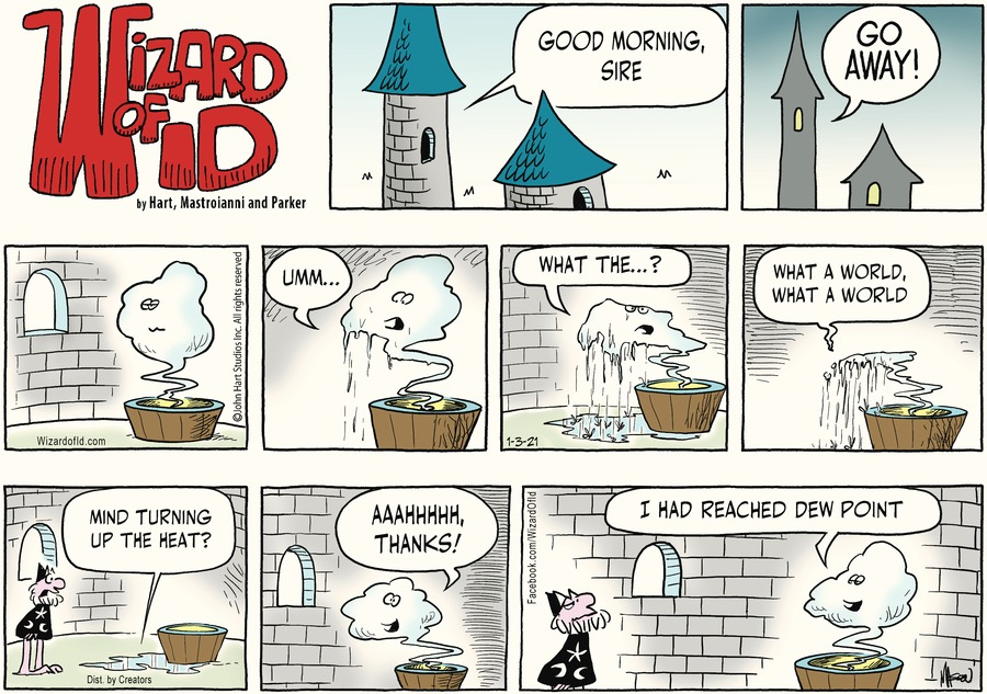 Wizard of Id Comic Strip for January 03, 2021