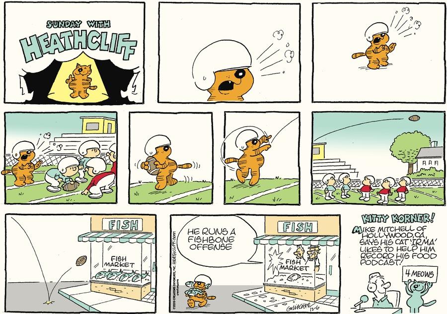 Heathcliff Comic Strip for December 06, 2020