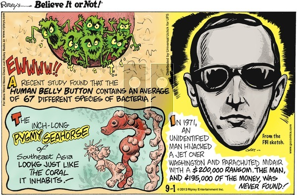 Ripley's Believe It or Not on Sunday September 1, 2013 Comic Strip
