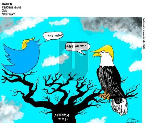 ViewsAmerica - Sunday May 31, 2020 Comic Strip
